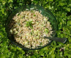 SALADE QUINOA CONCOMBRE MENTHE dans Allez-y c'est permis! salade-quinoa-concombre-menthe-300x245