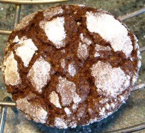 BISCUITS CRAQUELES AU CHOCOLAT dans Petits gâteaux et Cie dscn0008-300x276