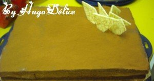 gateau-tout-chocolat-300x159